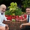 Floral displays bring life to Westbury