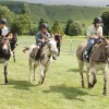 Yeeha!Donkey Derby raises over £4,000 for charity