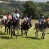 Twelfth annual Donkey Derby is a runaway success!