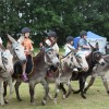 Donkey Derby welcomes biggest crowd to date