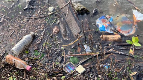 """Rubbish is marring town's """"lovely"""" areas"""